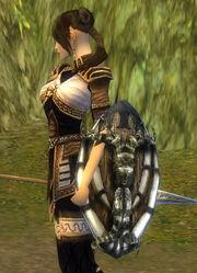 Female Monk Ancient Shield Bug.jpg