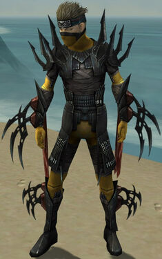 Assassin Ancient Armor M dyed front.jpg