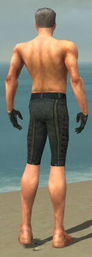 Mesmer Elite Rogue Armor M gray arms legs back.jpg