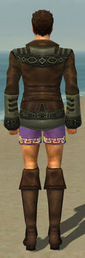 Mesmer Istani Armor M gray chest feet back.jpg