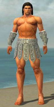 Warrior Ascalon Armor M gray arms legs front.jpg