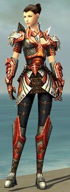 Warrior Deldrimor Armor F dyed front.jpg