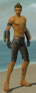 Assassin Exotic Armor M gray arms legs front.jpg