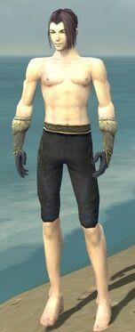 Elementalist Norn Armor M gray arms legs front.jpg