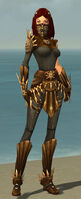 Ranger Elite Sunspear Armor F gray front.jpg