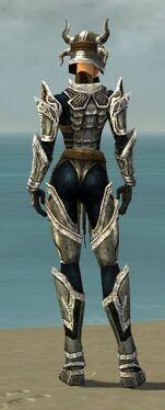 Warrior Elite Sunspear Armor F dyed back.jpg