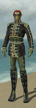 Mesmer Canthan Armor M gray front.jpg