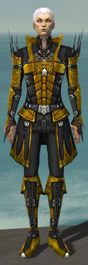 Necromancer Cabal Armor M dyed front.jpg