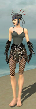 Necromancer Luxon Armor F gray arms legs front.jpg