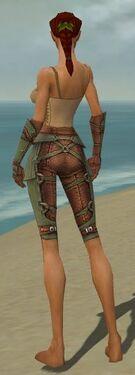 Ranger Ascalon Armor F gray arms legs back.jpg