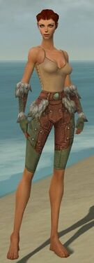 Ranger Fur-Lined Armor F gray arms legs front.jpg