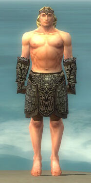 Warrior Canthan Armor M gray arms legs front.jpg
