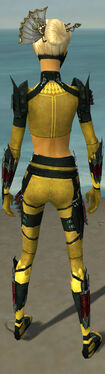 Assassin Seitung Armor F dyed back.jpg