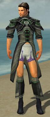 Elementalist Elite Luxon Armor M gray chest feet front.jpg