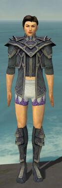 Elementalist Krytan Armor M gray chest feet front.jpg