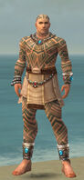Monk Labyrinthine Armor M gray front.jpg
