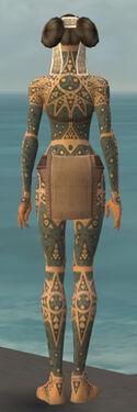 Monk Star Armor F gray back.jpg