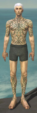 Necromancer Scar Pattern Armor M gray chest feet front.jpg