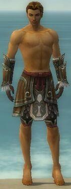 Ranger Elite Canthan Armor M gray arms legs front.jpg