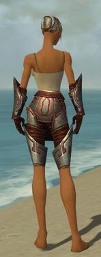 Warrior Asuran Armor F gray arms legs back.jpg