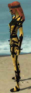 Assassin Obsidian Armor F dyed side.jpg