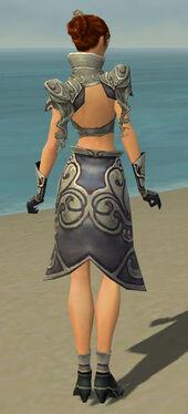 Elementalist Monument Armor F gray back.jpg