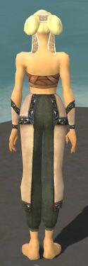 Monk Obsidian Armor F gray arms legs back.jpg