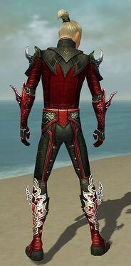 Assassin Deldrimor Armor M dyed back.jpg