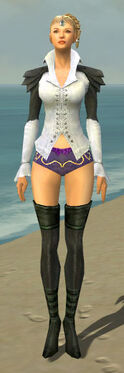 Mesmer Ascalon Armor F gray chest feet front.jpg