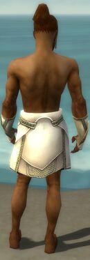 Paragon Asuran Armor M gray arms legs back.jpg