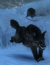 Stonewolf.jpg