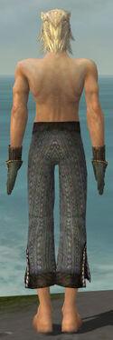 Elementalist Sunspear Armor M gray arms legs back.jpg