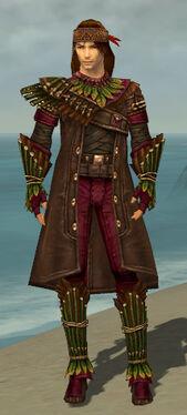 Ranger Druid Armor M dyed front.jpg