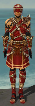 Ritualist Imperial Armor M dyed front.jpg