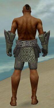 Warrior Elite Platemail Armor M gray arms legs back.jpg