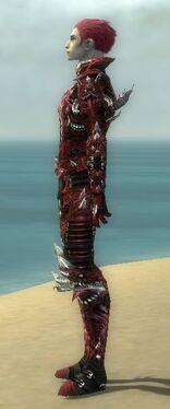 Necromancer Elite Canthan Armor M dyed side.jpg