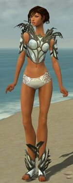 Paragon Primeval Armor F gray chest feet front.jpg