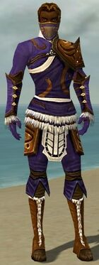 Ranger Canthan Armor M dyed front.jpg