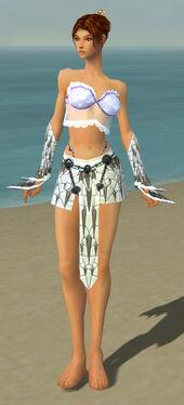 Elementalist Elite Iceforged Armor F gray arms legs front.jpg