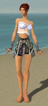 Elementalist Shing Jea Armor F gray arms legs front.jpg