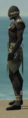 Ritualist Kurzick Armor M gray side.jpg