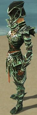 Warrior Elite Luxon Armor F dyed side.jpg