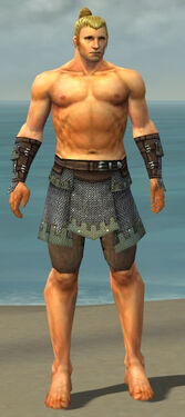 Warrior Tyrian Armor M gray arms legs front.jpg
