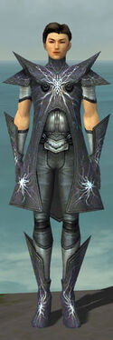 Elementalist Stormforged Armor M gray front.jpg
