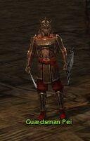 Guardsman Pei.jpg