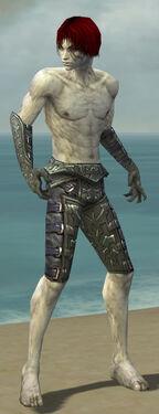 Necromancer Ascalon Armor M gray arms legs front.jpg