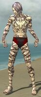 Necromancer Elite Scar Pattern Armor M gray front.jpg