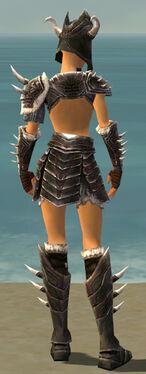 Warrior Norn Armor F gray back.jpg