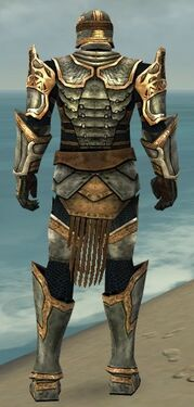 Warrior Sunspear Armor M dyed back.jpg