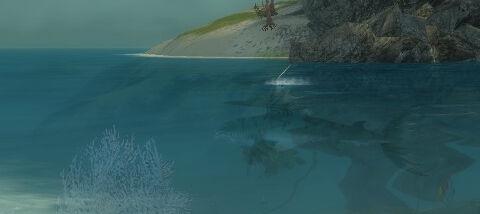 Bigfish dalessio.jpg